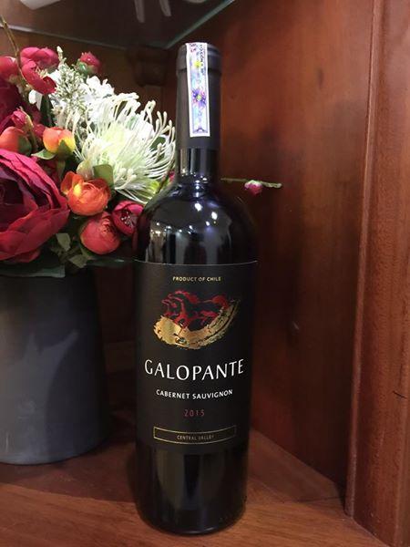 Rượu vang Chile Galopante